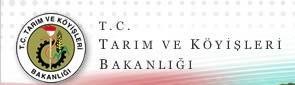 tarimbak8_r1_c1
